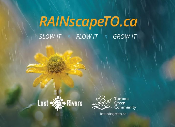 RainscapeTO Postcard Header
